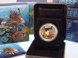 Australien Sea Life The Reef Lionfish